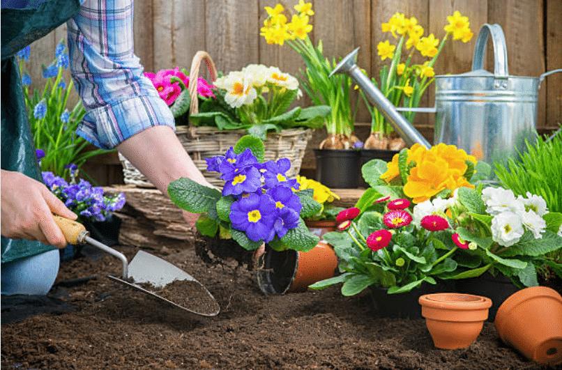 10 astuces naturelles pour entretenir son jardin